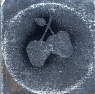 Silver Apples 1