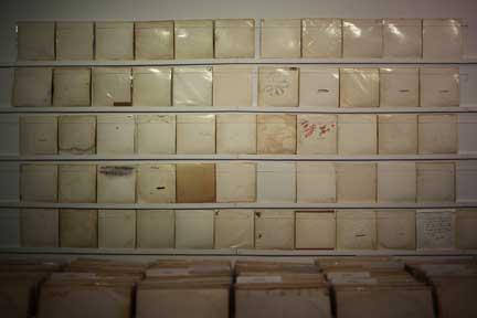 White-wall-sml